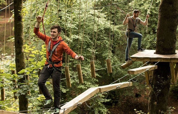 treetop trek manchester